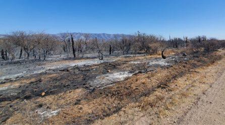 Incendios: Nación homologó la declaración de Córdoba por Desastre Agropecuario