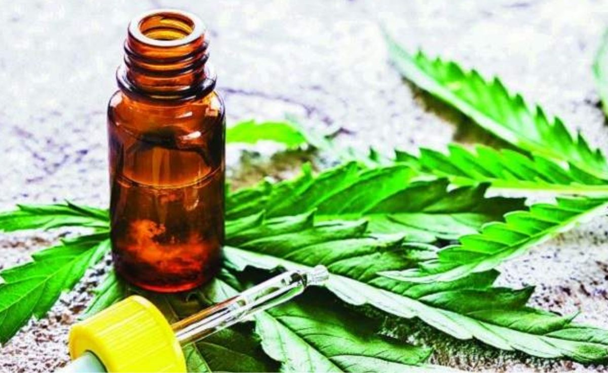 La Provincia de Córdoba adhirió a la ley nacional de uso medicinal del cannabis
