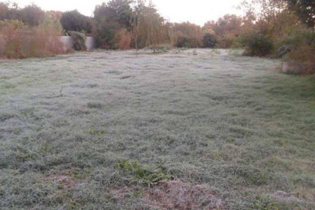 Llegó el frío: se registraron heladas en el sur cordobés y nieve en las sierras