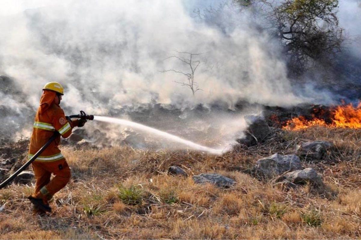 Provincia declarará en Desastre Agropecuario las zonas afectadas por incendios