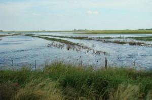 inundacionagropec