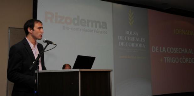 Trigo: el gobierno de Córdoba apoyará a productores con créditos subsidiados