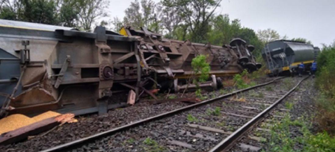 Descarriló un tren en proximidades de General Levalle